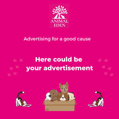 Werbung-Logo-Sponsoren-English