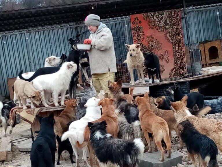 Saving animal life in Moldova